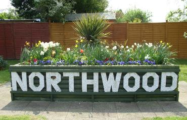 northwoodflowerbed